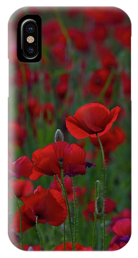 Umbria IPhone X Case featuring the photograph Umbria Poppies 2 by Roger Mullenhour