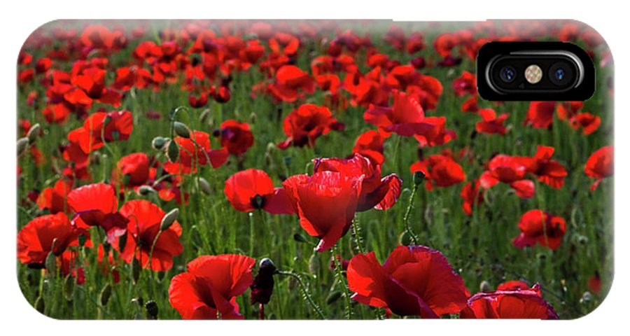 Umbria IPhone X Case featuring the photograph Umbria Poppies 3 by Roger Mullenhour