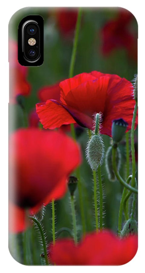 Poppies IPhone X Case featuring the photograph Umbria Poppies by Roger Mullenhour
