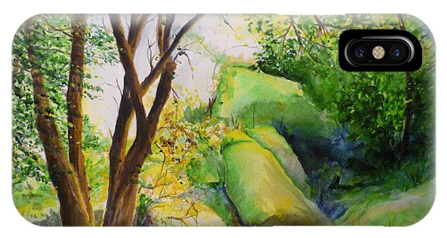 Wood IPhone X Case featuring the painting Un Rincon En El Valle De Los Suenos by Lizzy Forrester