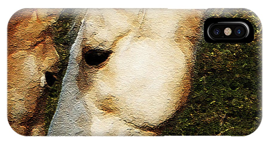 Horses IPhone X Case featuring the photograph Understanding by Linda Shafer