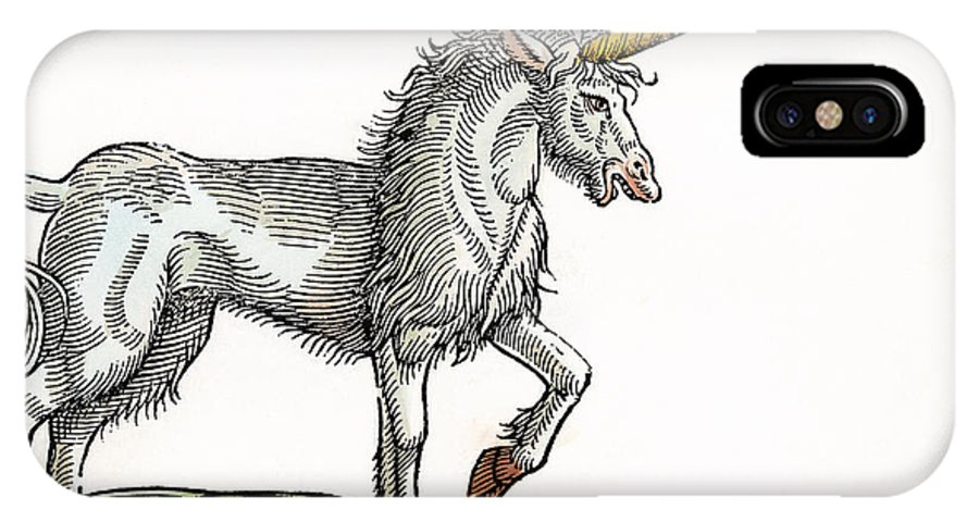 1607 IPhone X Case featuring the photograph Unicorn, 1607 by Granger