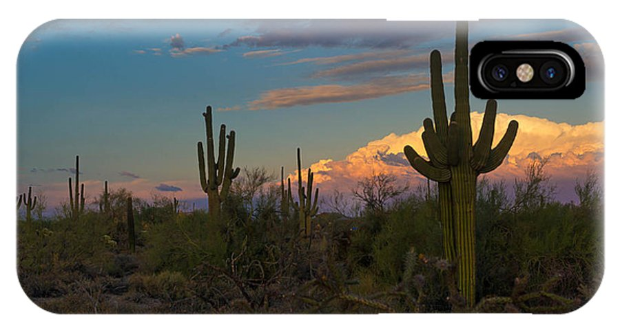 Saguaros IPhone X Case featuring the photograph Until Tomorrow by Jackie Follett