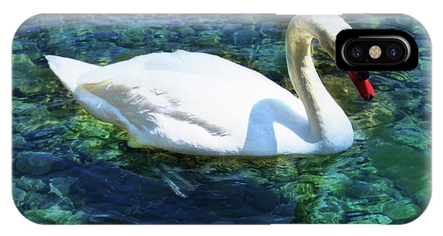Swan IPhone X Case featuring the photograph Unusual Beauty by Natasha Johnson