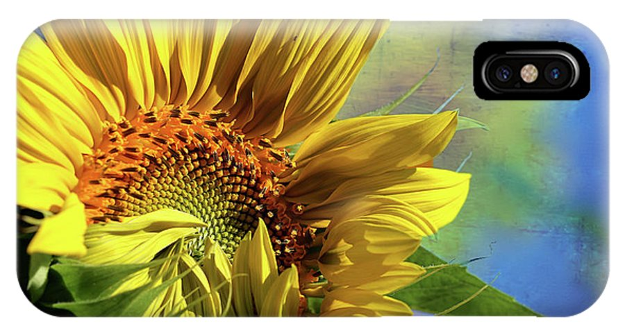 Sunflower IPhone X Case featuring the photograph Unveiling by Vanessa Thomas