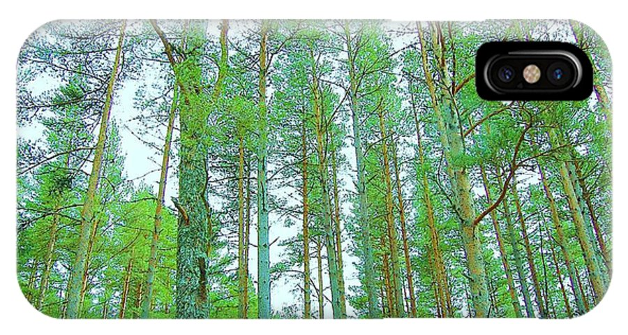Trees IPhone X Case featuring the photograph Up Above by HweeYen Ong