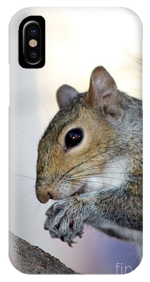 Animal IPhone X Case featuring the photograph Up Close And Personal by Mesa Teresita
