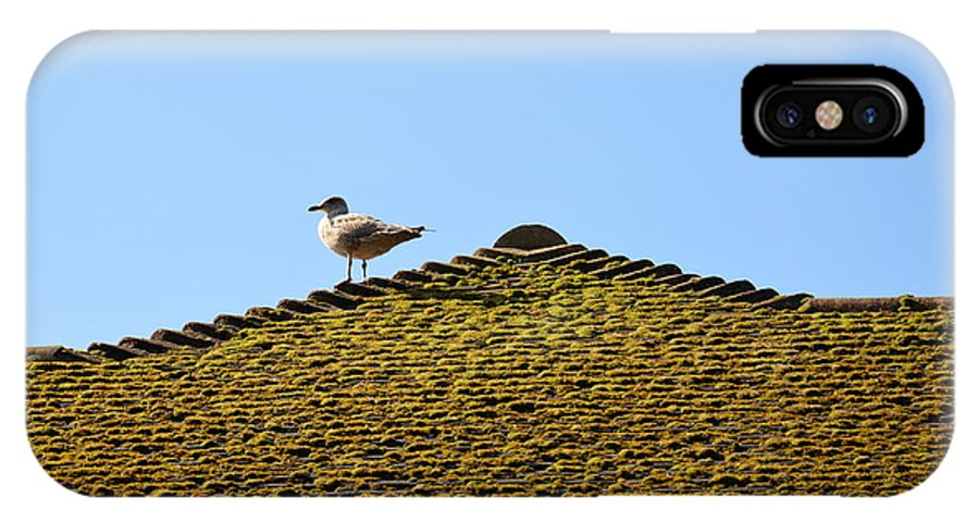 Upon The Roof IPhone X Case featuring the photograph Upon The Roof by Des Marquardt