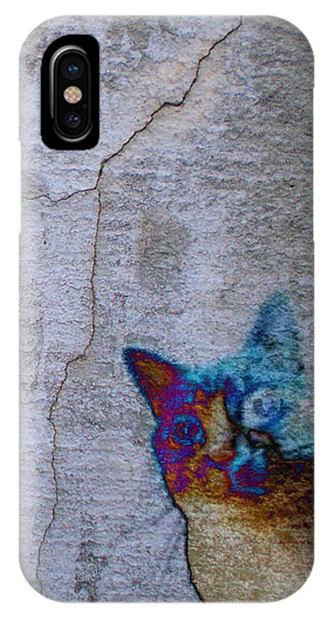 Animals IPhone X Case featuring the photograph Urban Cat by Jan Amiss Photography