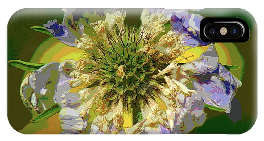 Flowers IPhone X Case featuring the photograph Urgent Colors by Ben Upham III