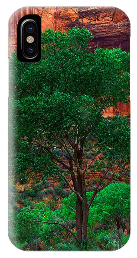 Virgin River IPhone X / XS Case featuring the photograph Utah - Cottonwood by Terry Elniski