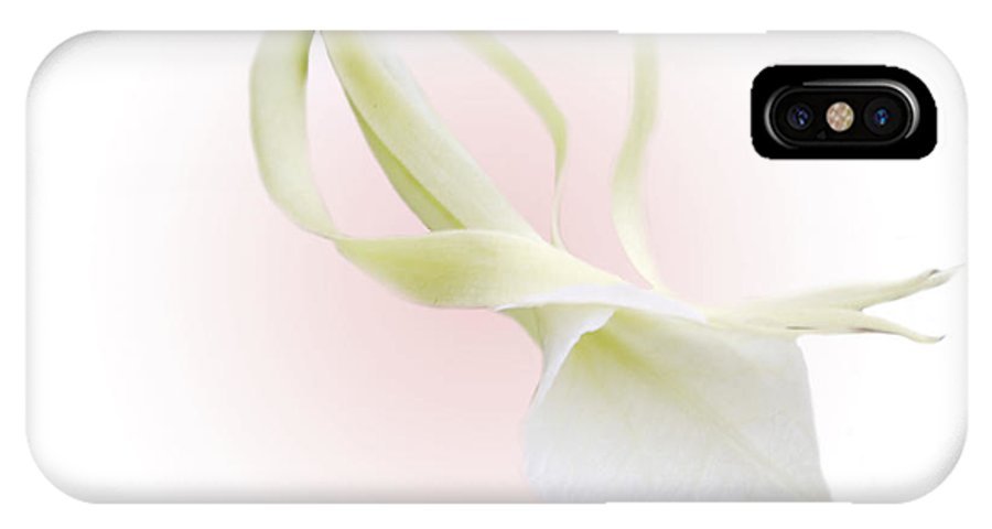 Love IPhone Case featuring the photograph Valentine Orchid by Marilyn Hunt