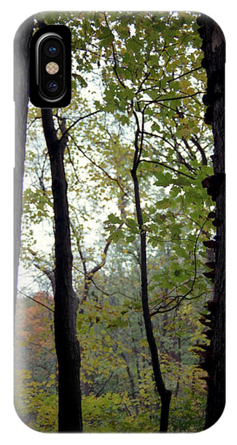 Tree IPhone X Case featuring the photograph Vertical Limits by Randy Oberg
