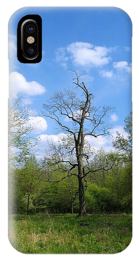 Landscape IPhone Case featuring the photograph Vibrant Individualism by Dylan Punke