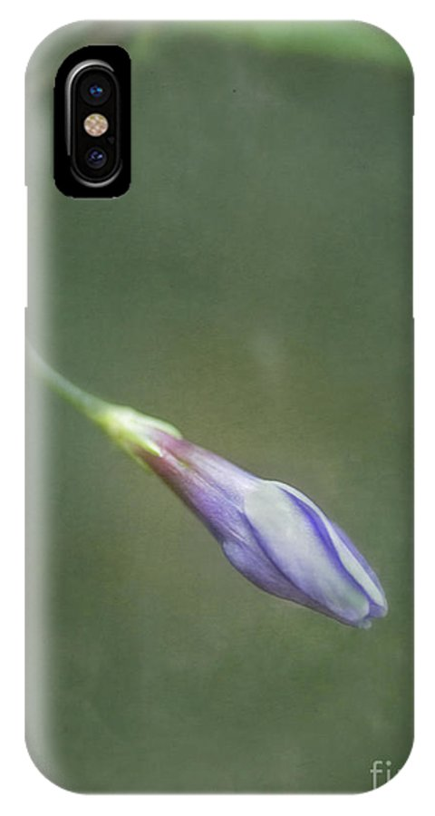 Periwinkle IPhone X / XS Case featuring the photograph Vinca by Priska Wettstein
