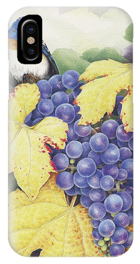 Grapes IPhone X Case featuring the drawing Vineyard Blue by Amy S Turner
