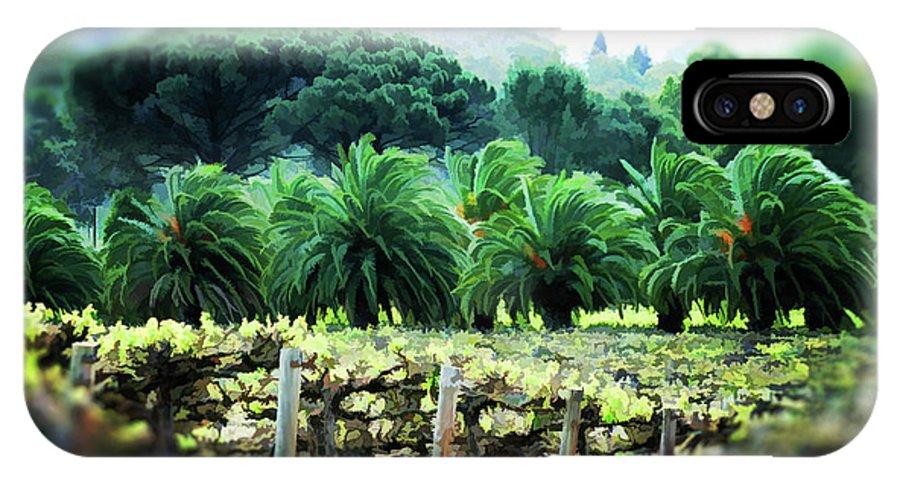Vineyard IPhone X Case featuring the photograph Vino Palmetto by Douglas Barnard