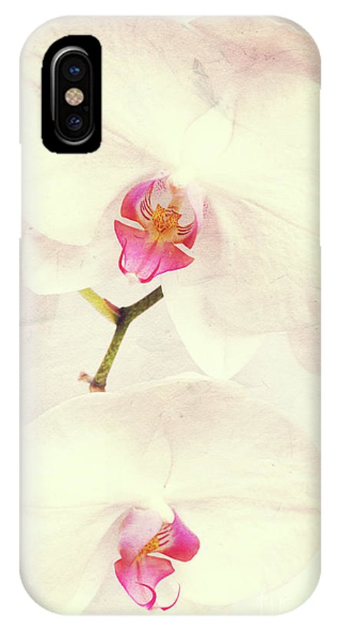 Orchid IPhone X Case featuring the photograph Vintage White Orchids by Delphimages Photo Creations