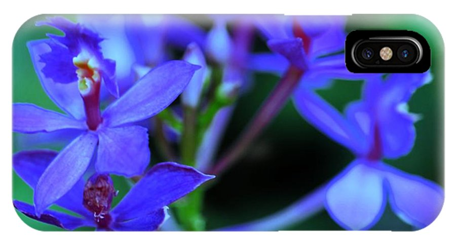 Orchid IPhone X Case featuring the photograph Violet Orchids by Kathleen Struckle