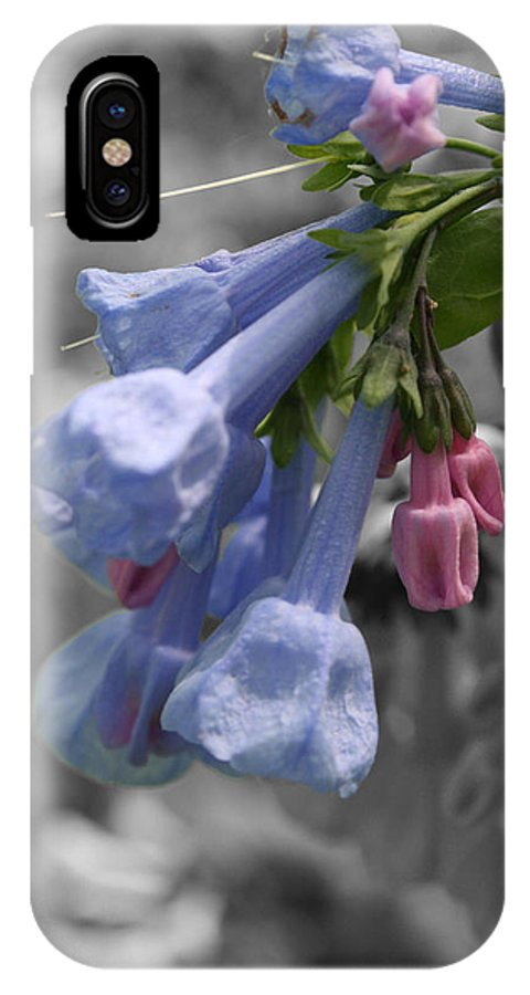 Macro IPhone X Case featuring the photograph Virginia Chorus by Dylan Punke
