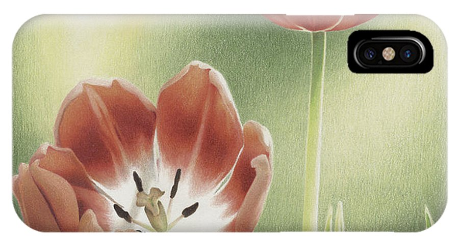 Tulips IPhone X Case featuring the drawing Visitation by Amy S Turner