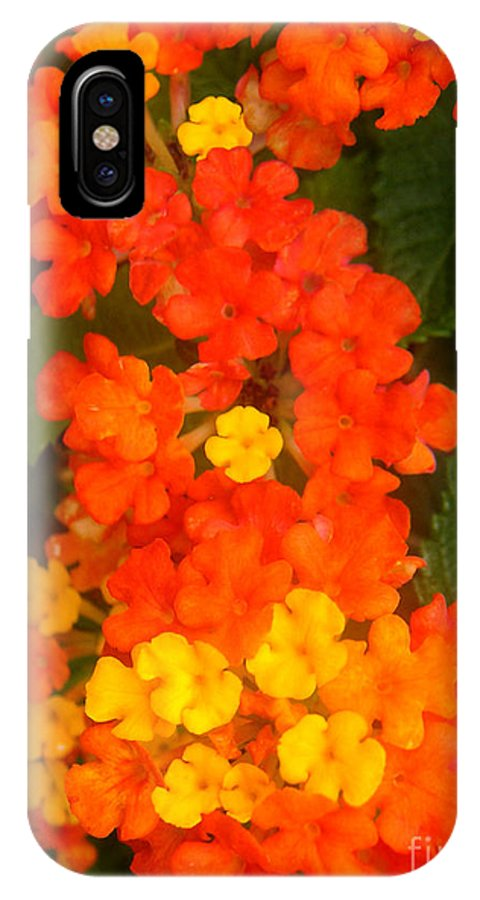 Nature IPhone Case featuring the photograph Volcanic Display by Lucyna A M Green