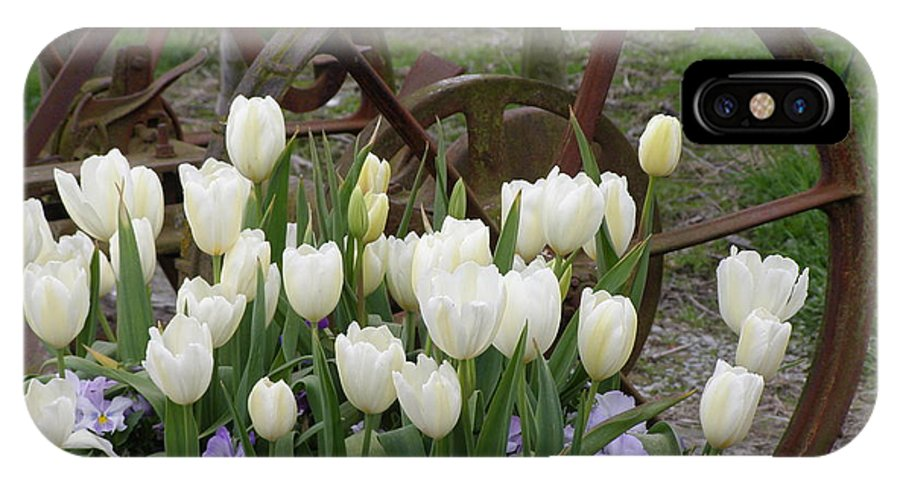 White IPhone Case featuring the photograph Wagon Wheel Tulips by Louise Magno