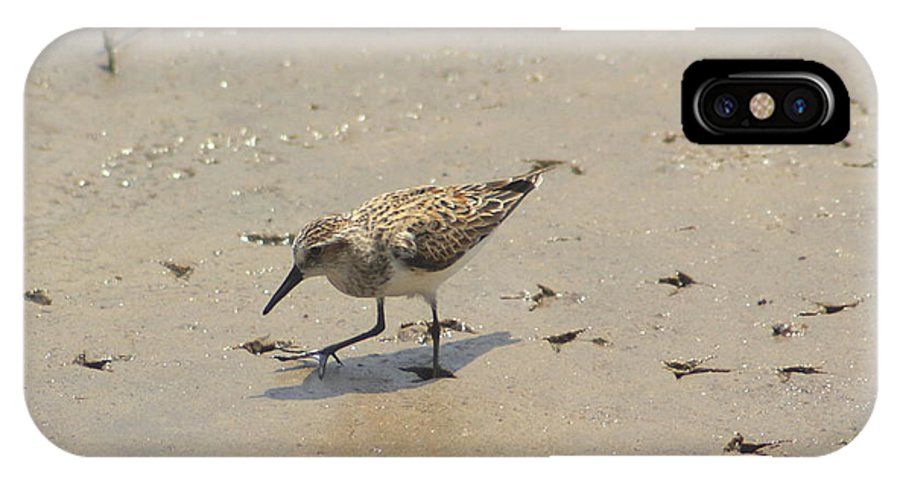 Sandpiper IPhone X Case featuring the photograph Walk Softly - Debbie May - Photosbydm by Debbie May