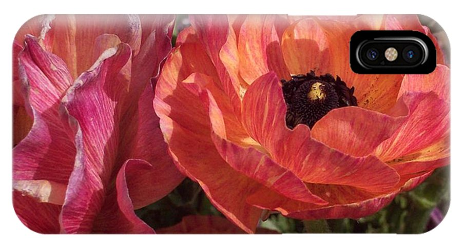 Floral IPhone X Case featuring the photograph Warm Flower Friends by Jean Booth