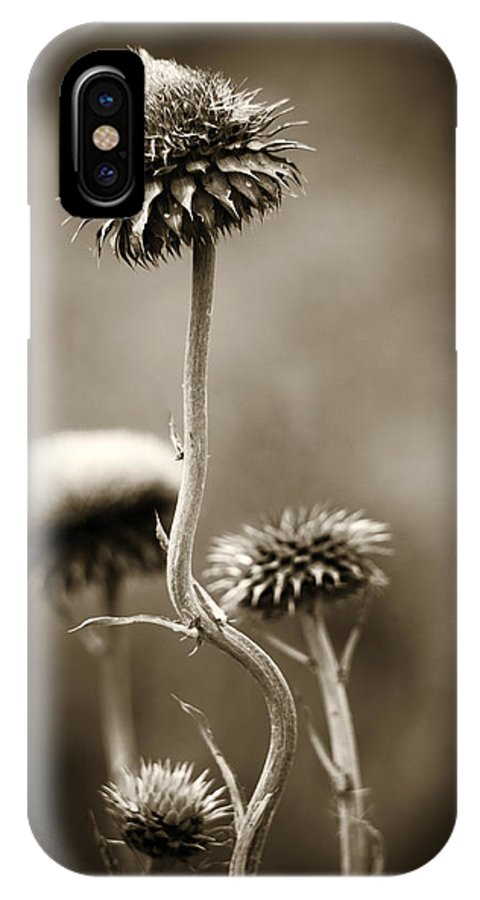 Purple IPhone X Case featuring the photograph Warm Thistle by Marilyn Hunt
