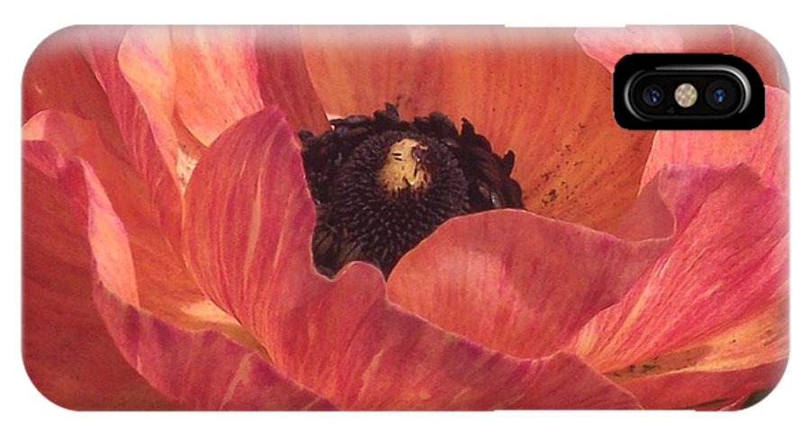 Ranunculus IPhone X Case featuring the photograph Warm Tone Ranunculus by Jean Booth