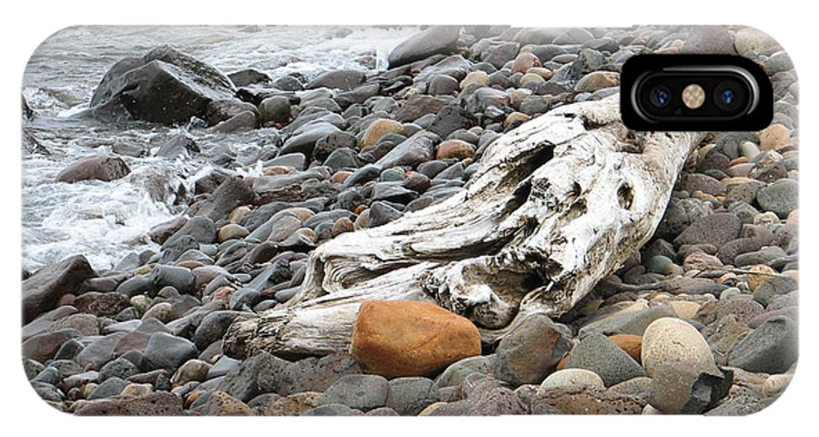 Driftwood IPhone Case featuring the photograph Washed Up by Kelly Mezzapelle