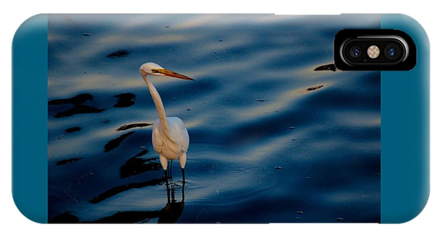 Water Bird Series IPhone X Case featuring the photograph Water Bird Series 31 by Stephen Poffenberger