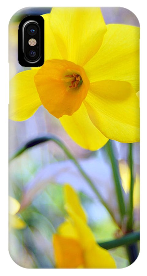 Daffodil IPhone Case featuring the photograph Water Color Daffodil by Amy Fose