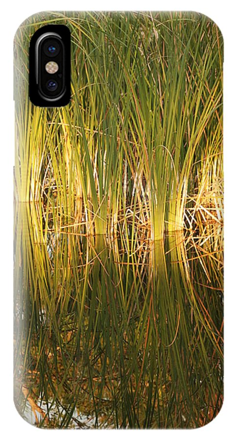Grass IPhone X Case featuring the photograph Water Grass In Sunset by Rob Hans