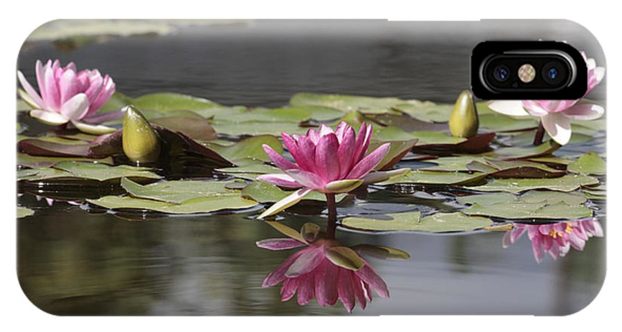 Lily IPhone X Case featuring the photograph Water Lily 3 by Phil Crean