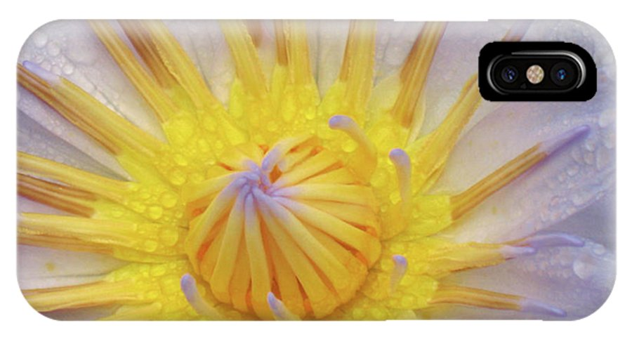 Water Lily Yellow Blue Purple Close-up IPhone X Case featuring the photograph Water Lily by Christina Geiger