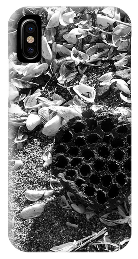Water Lotus IPhone X / XS Case featuring the photograph Water Lotus And Shells In Bw by Sara Raber