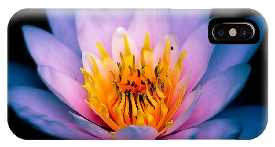 Watercolor IPhone X Case featuring the photograph Watercolors by Anita Gatrell