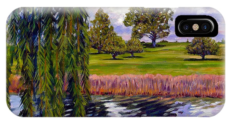 Landscape IPhone Case featuring the painting Weeping Willow - Brush Colorado by John Lautermilch