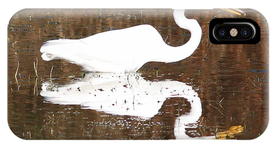 Egret IPhone X Case featuring the photograph What The Egret Caught by Carol Groenen
