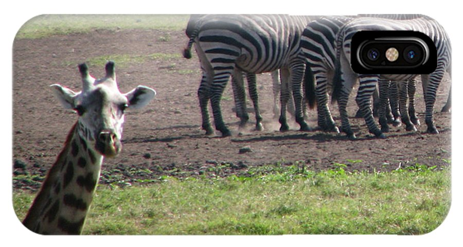 Giraffe Africa Tanzania Funny IPhone X Case featuring the photograph What You Say by Diane Barone