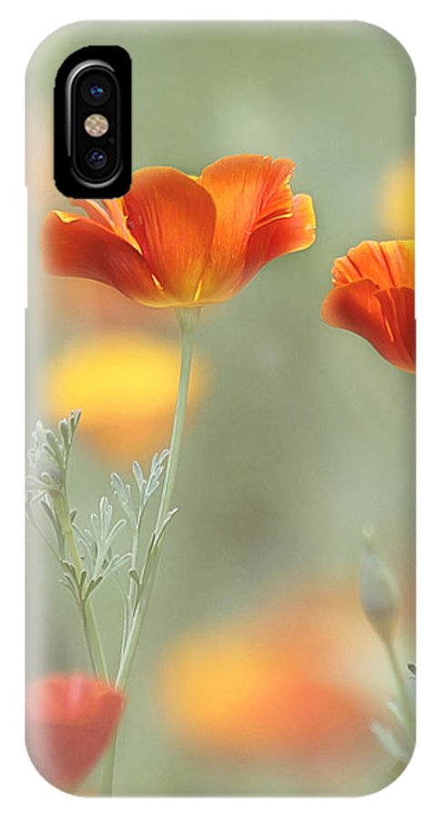 Orange Flower IPhone X / XS Case featuring the photograph Whimsical Summer by Kim Hojnacki