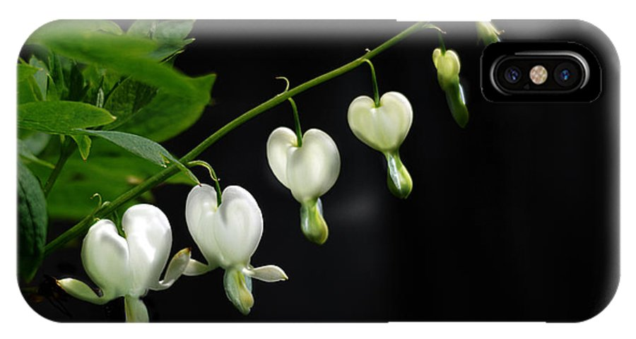 Nature IPhone X Case featuring the photograph White Bleeding Hearts by Susan Capuano