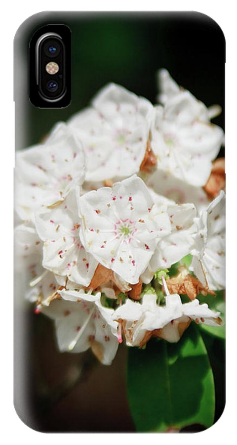 Flowers IPhone X Case featuring the photograph White Blooms by Rob Narwid