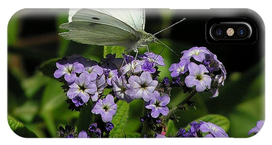 White IPhone Case featuring the photograph White Butterfly by Louise Magno