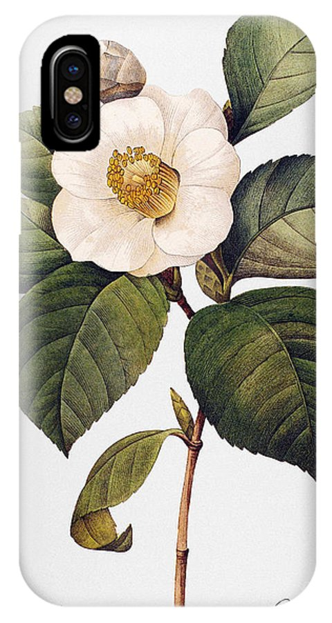 1833 IPhone X Case featuring the photograph White Camellia by Granger