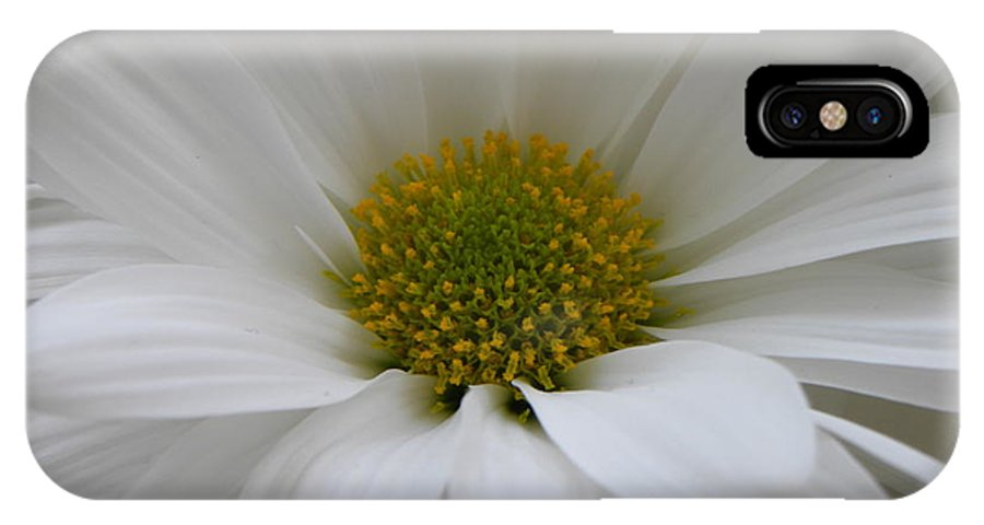 Nature IPhone X Case featuring the photograph White Daisy by Shannon Turek