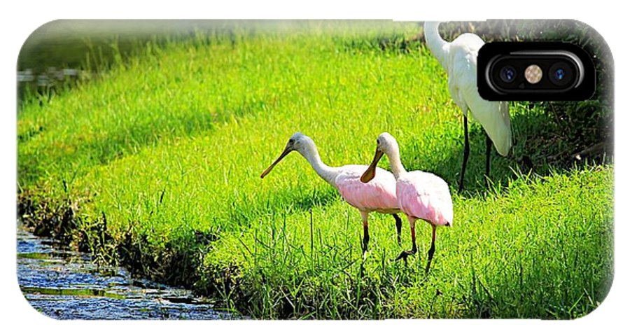 Egret IPhone X Case featuring the photograph White Egret And Roseate Spoonbills by Vicki Dreher