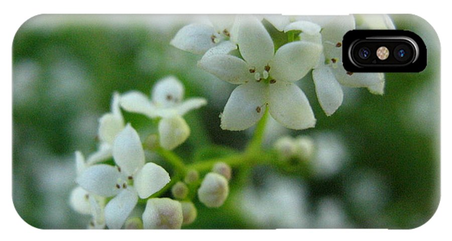 Flower IPhone Case featuring the photograph White Floral Cluster by Melissa Parks